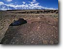Stock photo. Caption: Petroglyphs and Sierra Nevada Volcanic Tableland Inyo County California -- Keywords: petroglyph native american rock art parks united states america ancient civilization civilizations indian indians communication historic historical mystical petroglyph design designs spiritual culture  design designs sierras snow covered capped peaks