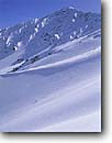 Stock photo. Caption: Backcountry skiing on Mt. Tom John Muir Wilderness Inyo National Forest Sierra Nevada,  California -- Keywords: united states america mountain country sierras backcountry people highcountry landscapes skier skiing winter snow covered crosscountry outdoor recreation sunny tracks making wildernesses adventure pristine solitude blue skies clear sport sports alpine