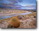 Stock photo. Caption: Amargosa River near Shoshone Amargosa proposed Wild & Scenic River Inyo County Mojave Desert,  California -- united states america parks mohave rivers unprotected deserts cloud clouds china ranch great basin range landscape landscapes eastside stark arid habitat