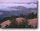 Stock photo. Caption: North Coast Ranges    and fog above Alpine Lake Mount Tamalpais State Park Marin County,  California -- Keywords: united states america landscape landscapes coast coasts west pacific parks rolling hills oaks foggy clouds clouds summer weather san francisco bay area clouds cloudy lakes vista vistas view scenic views