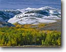 Stock photo. Caption: Aspens Monument Ridge Toiyabe National Forest Sierra Nevada, California -- Aspen fall autumn color colors   mountain mountains snow snowfall cold crisp united states america peaks capped snowfall ridges landscape landscapes eastern