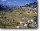 Stock photo. Caption: Helen Lake Meadow Mono County Toiyabe National Forest Sierra Nevada,  California -- Keywords: united states america people outdoor recreation freedom solitude summer hiking hiker backpacker backpacking  highcountry backcountry wildernesses sierras landscape landscapes blue person meadows remote alpine walking walk woman women meadows hike hikers