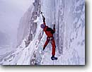 Stock photo. Caption: Ice climbing in Lee Vining Canyon Inyo National Forest Eastern Sierra Nevada Mono County, California -- Keywords: united states america high mountain high country sierras backcountry people highcountry winter snow covered snowy outdoor recreation extreme climb climber climbing mountain frozen freezing sports sport adventure challenge challening vertical wall climbers