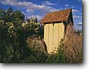 Stock photo. Caption: Outhouse by the    sweet smelling lilac bush Mono County Sierra Nevada,  California -- united states america outhouses toilet toilets latrine mountains sierras cute symbol western rest room john privy head rustic