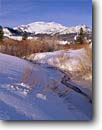 Stock photo. Caption: Willows along Mammoth Creek  and Mammoth Mountain Inyo National Forest, Eastern Sierra Mono County, California -- Keywords: united states america winter highcountry backcountry sierras landscape landscapes landmark landmarks peaks mountain mountains granite ridges ridge prominent skiing area areas scenic scenics clear sunny blue skies