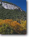 Stock photo. Caption: Manzanita and Oregon oak   below Parker Bluffs Giant Sequoia National Monument Sierra Nevada,  California -- united states america mountains monuments granite dome domes dramatic  fall autumn color colors foliage forest oaks manzanitas