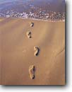 Stock photo. Caption: Footprints and Pacific Ocean Pismo State Beach Central Coast San Luis Obispo County, California -- united states america coastal sand sandy footprint beach steps step beaches seashore seashores oceans leisure solitude transitory holiday mystery magic get-aways pristine poetic