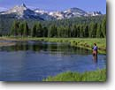 Stock photo. Caption: Fly  fishing, Tuolumne River Echo and Unicorn Peaks Yosemite National Park Sierra Nevada, California -- meadow meadows rivers peak parks mountains mountain flyfish flyfishing summer outdoor recreation united states america morning light world heritage Site Sites challenge challenging landscape landscapes travel tourist people fishing angler anglers angling