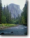 Stock photo. Caption: Merced River and El Capitan Yosemite Valley Yosemite National Park Sierra Nevada,  California -- granite domes glaciated glacial valleys parks world heritage site sites united states america landscape landscapes pristine tourist attraction attractions spiritual vacation  destination destinations sierras icon icons famous nature natural rivers