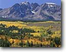 Stock photo. Caption: Aspen, blue spruce and Mt. Powell   from the Blue River Valley Gore Range,  Arapahoe National Forest Rocky Mountains,  Colorado -- forests united states america rockies highcountry  peaks autumn color fall aspens valleys landscape landscapes mountain colors colour colours ranges