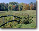 Stock photo. Caption: Meandering fence in field Brown County Indiana -- Keywords: country united states america forest forests tree trees fall fences fields sunny blue skies bucolic pastoral rural ranch ranches farms farm ranching foliage midwestern midwest family wooden