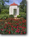 Stock photo. Caption: Roses and Summer House Rosedown Plantation State Historic Site St. Francisville Louisiana -- historical scenic destination destinations landmark landmarks attraction spring tourist attraction plantations national sunny luxury wealth wealthy garden clear elegant elegance scenics formal flowers tours historic  tour rose gardens flowers flower bloom