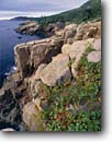 Stock photo. Caption: Otter Cliffs along Ocean Drive Newport Bay Acadia National Park Mount Desert Island, Maine -- Keywords: united states america parks headlands shoreline shorlines atlantic eastern seaboard cliff seascape seascapes northern northeastern islands headland headlands