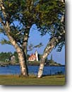 Stock photo. Caption: Paper birch and Eagle Harbor Light Eagle Harbor,  Lake Superior Keweenau Peninsula, Keweenau County Upper Peninsula,  Michigan -- united states america lighthouse light historic lighthouses great lakes protection beacon beacons direction guidance pharos navigation america navigational aid aids spring tree trees birches historic historical great lakes