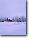 Stock photo. Caption: Farm off Highway 51 Windemere Township Pine County Minnesota -- snow fresh snowfall winter cold snowing midwest midwestern states united america backroad backroads red barns red barn rural farming cold fenceline northern farmland building buildings