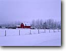 Stock photo. Caption: Farm off Highway 51 Windemere Township Pine County Minnesota -- snow fresh snowfall winter cold snowing smidwest midwestern states united america backroad backroads red barns red barn rural farming cold fenceline wintery building buildings