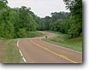 Stock photo. Caption: Natchez Trace Parkway   just north of Natchez Adams County Mississippi -- sunny clear historic historical scenic destination destinations landmark landmarks attractions spring warm parkways scenics byway byways drives drive road roads roadway roadways backroad backroads signs sign peaceful quiet places nature green trees tree