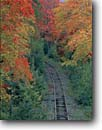 Stock photo. Caption: Boston and Maine   railroad tracks     near Bath New Hampshire -- Grafton County track trees maple maples fall autumn new england northeast northeastern united states america railroads progress transportation