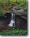 Stock photo. Caption: Blue Hen Falls Cuyahoga Valley National Park Summit County Ohio -- hardwood forest forests parks midwest midwestern united states landscapes landscape travel tourist destination destinations urban spring waterfall waterfalls creek creeks stream streams cascade cascades tranquil peaceful pure purity