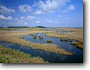 Stock photo. Caption: Tidal marsh along the Edisto River Fenwick Island ACE Basin Colleton County, South Carolina -- Keywords: united deep south southern states america river rivers lowcountry swamp swamps swampy pristine estuarine estuary estuaries unspoiled ecosystem ecosystems bottomland bottomlands riparian wetlands lowland lowlands