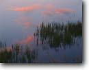 Stock photo. Caption: Cloud reflections along Edisto River Fenwick Island ACE Basin Colleton County,  South Carolina -- Keywords: united deep south southern states america creeks river rivers lowcountry swampy swamp swamps pristine estuarine estuary estuaries unspoiled ecosystem ecosystems reflection artistic nature pastel pastels lowland lowlands