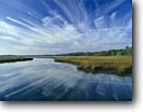Stock photo. Caption: Tidal marsh on Huspah Creek off    Whale Branch and the Coosaw River Beaufort County South Carolina -- united deep south southern states america river rivers lowcountry swamp swamps swampy pristine estuarine estuary estuaries unspoiled ecosystem ecosystems bottomland bottomlands riparian wetlands creeks lowland lowlands
