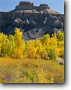 Stock photo. Caption: Fremont cottonwoods and Mancos Shale buttes San Rafael River Valley Colorado Plateau, Utah -- canyon sandstone landscape landscapes tourist travel destination destinations scene scenic geology formation formations geologic rocks  clear sunny calm patience   spectacular foliage colors color blue fall autumn