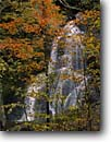 Stock photo. Caption: Red maple   and Moss Glen Falls Granville Gulf State Reservation Vermont,  New England -- forest forests waterfall waterfalls creek creeks stream streams fall autumn northeast northeastern states united hardwood northern america maples cascade cascades deciduous tree trees