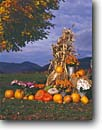 Stock photo. Caption: Autumn decorations Stowe Vermont New England -- united states america pumpkin autumn fall decoration holiday  pastoral  americana roadside attractions gourds pumpkins seasonal seasons