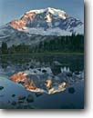Stock photo. Caption: Mount Rainier   from Moraine Park Mount Rainier National Park Cascade Range,  Washington -- united states america parks peaks subalpine mountains summer pacific northwest northwestern landscape landscapes lakes pond ponds tarn tarns volcano volcanoes glacier glaciers reflection reflections backcountry wilderness cascades high country extinct