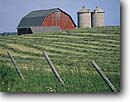 Stock photo. Caption: Farm Door County Door Peninsula Wisconsin -- Keywords: red barn barns farms farming barbed wire fence fences silo silos hay field fields midwest midwestern united states america summer rural agriculture rows building buildings sunny blue sky skies alfalfa pastoral landscape landscapes windrow windrows