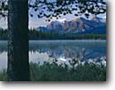 Stock photo. Caption: Bow Range from Herbert Lake Banff National Park Rocky Mountains Alberta,  Canada -- blue glacial tree trees lakes world heritage site sites parks mountain canadian rockies landscape landscapes tourist peace destination destinations peak peaks international travel reflections reflections calm placid tranquil dawn