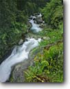 Stock photo. Caption: Rio Chirripo, Pacific slopes L