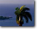 Stock photo. Caption: Royal palm  and Folly Point Lighthouse   from Bonnie View Port Antonio, Jamaica -- caribbean lighthouse lighthouses tropical destination destinations vacation vacations tourist travel seascape seascapes island islands harbor palms safty beacon beacons navigation navigational aid