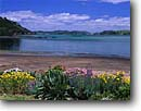 Stock photo. Caption: Kaingahoa Bay from Rawhiti Bay of Islands North Island New Zealand -- shorelines shorline morning summer travel destination destinations tourist seascape seascapes tourist quaint bays attraction attractions peaceful peace tidal maritime shore international south pacific