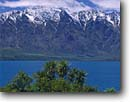 Stock photo. Caption: Grass trees, Lake Wakatipu   and The Remarkables  Queenstown,  Southern Alps South Island,  New Zealand -- summer travel destination destinations tourist attraction attractions peaceful peace international mountains mountain blue aqua snowcapped peaks peak lakes stunning breathtaking dramatic holiday tree native
