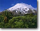 Stock photo. Caption: Mount Taranaki   from North Egmont Egmont National Park North Island, New Zealand -- summer travel destination destinations tourist tourist attraction attractions peaceful peace international mountains mountain blue snowcapped peaks peak  stunning breathtaking dramatic landscape landscapes scenics scenic sunny clear parks snow majestic