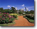 Stock photo. Caption: The rose garden in Palermo Buenos Aires Argentina South America -- travel destination destinations attraction attractions tourist gardens city roses international South America latin landmark landmarks