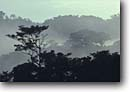 Stock photo. Caption: Dawn mist over cloud forest Monteverde Cloud Forest Reserve North-Central Highlands Alajuela Province, Costa Rica -- Rainforest central america tropical destination destinations travel tourist rainforests plants ecotourism cloudforest cloudforests forests layers reserves landscape landscapes latin american sunny clear skies silhouette
