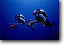 Stock photo. Caption: Cameramen use the latest in high tech mixed gas rebreather technology  to film marine wildlife New Providence Island,  Bahamas --   underwater scuba diving divers diver photographers cameraman camera cameras gear people cinemaphotography cinemaphotographer cinemaphotographers