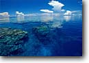 Stock photo. Caption: Coral reef from above Vanua Levu Barrier Reef Fiji Indo-Pacific -- tropical travel destination destinations tourist calm waters south cloud calm placid tranquil seas reflection reflections reefs corals paradise horizon exotic water ocean snorkeling dive diving seascape seascapes
