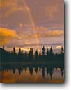 Stock photo. Caption: Rainbow at sunset reflected  in tundra pond near Wonder Lake Denali National Park Alaskan Range, Alaska -- united states america mountains ponds mountain summer light mount parks tiaga landscape landscapes reflection reflections majestic tourist destination destinations rainbows McKinley weather phenomenon sunsets