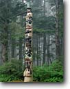 Stock photo. Caption: Totem poles in Sitka spruce forest Sitka National Historical Park Sitka,  Baranof Island Southeast Alaska -- pole native america southeast carve carving tree trees foggy misty fog indian arts majestic artistic mist spiritual northwest mystical history historical united states american family icon icons beliefs belief animal motif animals mystic alaskan summer