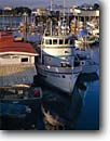 Stock photo. Caption: North Boat Harbor Wrangell Narrows Petersburg Alaska -- harbors commercial commerce fishing boats ships harbour harbours quaint village villages united states america west southeast pacific alaskan vessel vessels southeastern alaskan summer american