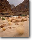 Stock photo. Caption: Marble Canyon at North Canyon Colorado River Grand Canyon National Park Colorado Plateau,  Arizona -- sculpted erosion eroded canyons parks destination weathered landscape landscapes solitude world heritage site sites sandy beach diverse harmony rocks smooth silky brown rivers red rock country redwall limestone bars sandbar sandbars sand