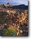 Stock photo. Caption: Brittlebush and Hilltop Anasazi Ruin   and Apollo Temple,  Grand Canyon Grand Canyon National Park Colorado Plateau,  Arizona -- canyons spring parks united states america world heritage site sites wilderness adventure river trips  desert deserts remote ancient civilization ruins archeological archeologic stone building native american abandoned archeology ancient ones survival