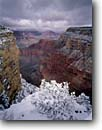 Stock photo. Caption: Great Mohave Wall and Isis Temple   from the Abyss,  South Rim Grand Canyon National Park Colorado Plateau,  Arizona -- spectacular dramatic united states america world heritage site sites landscape landscapes tourist destination destinations attraction attractions travel breathtaking erosion time view vacation family snow pinon snowfall winter red rock country plateaus