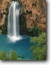 Stock photo. Caption: Havasu Falls Havasu Canyon Havasupai Indian Reservation Colorado Plateau,  Arizona -- united states america creek waterfall waterfalls sandstone red rock travertines limestone canyons reservations cottonwood tree trees country backcountry spring southwest southwesten Populus fremontii