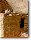 Stock photo. Caption: Anasazi pottery and pictograph Keet Seel Navajo National Monument Colorado Plateau, Arizona -- indian ruins pueblo anasazi alcove alcoves united states america native american archeology ancient civilization civilizations cliff dwelling dwellings cliffs red rock country abandoned architecture kiva kivas structure windows rock site archeology
