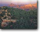 Stock photo. Caption: Schnebly Hill Vista   above Sedona Coconino National Forest Colorado Plateau, Arizona --   american country southwestern deserts butte southwest dramatic western summer united states america exciting landscape landscapes destination travel tourist buttes destinations red rock redrock sandstone wild